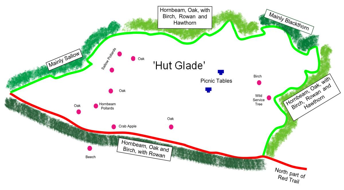 Hut Glade
